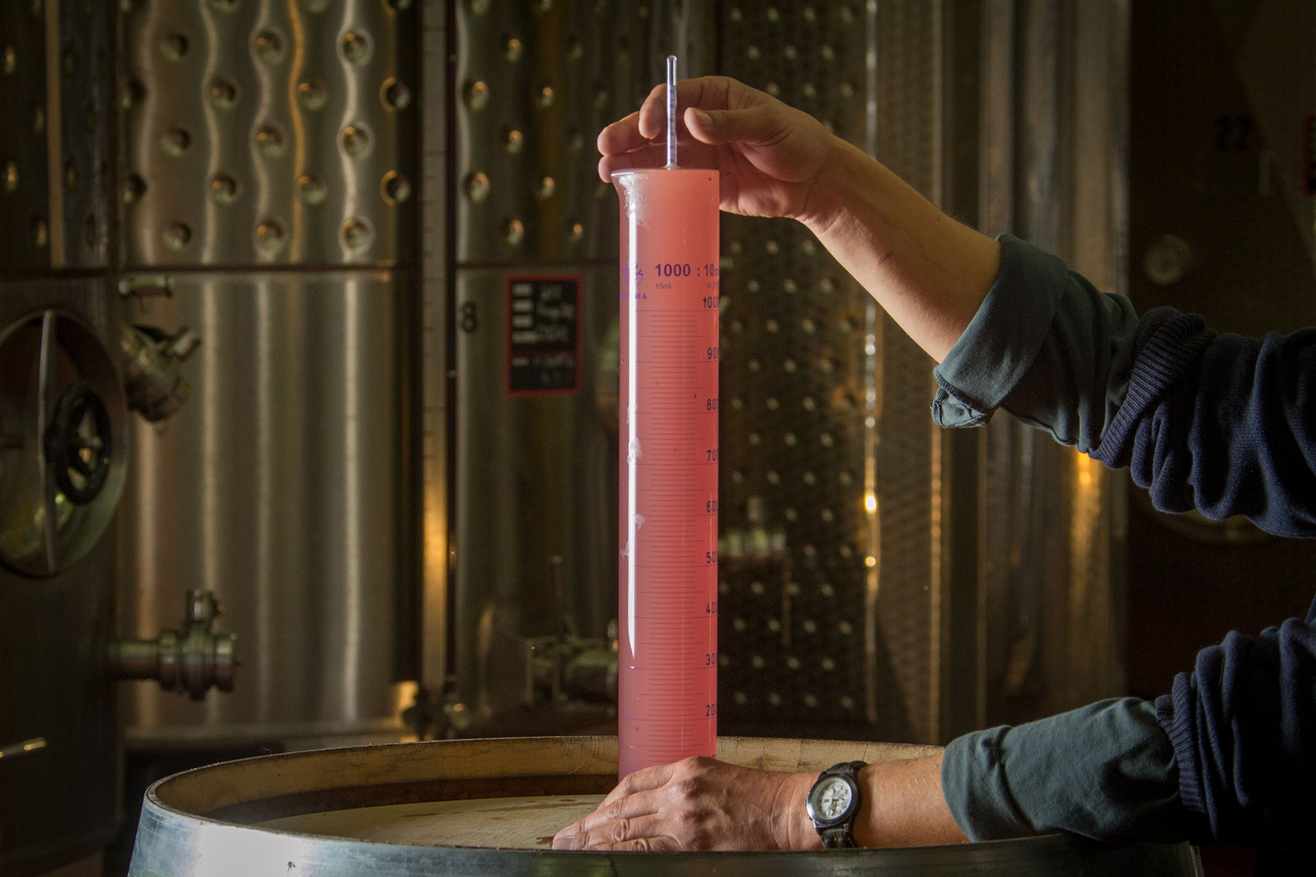 Vinification : analyses