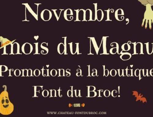 Novembre, le mois du Magnum!